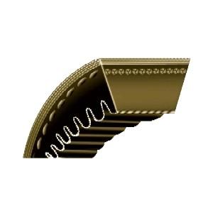 V-Belts - Rexon CX Notched | C, CX, SPC, SPCR, SPCX, CC