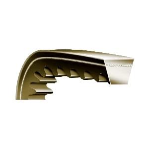 V-Belts - Rexon SPCX Notched | C, CX, SPC, SPCR, SPCX, CC