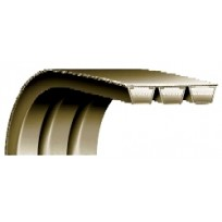 V-Belts - Rexon 8V Power Band | Power Bands & Variable Speed